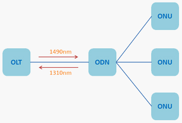 PON Network Structure
